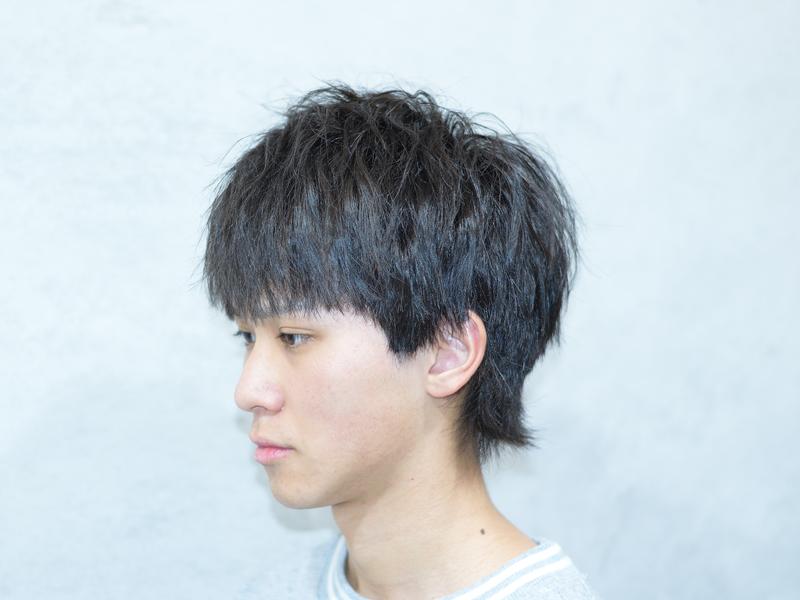 Hair Gallery8